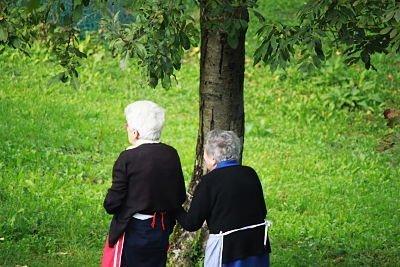 passeggiata nei campi intorno a Previdè