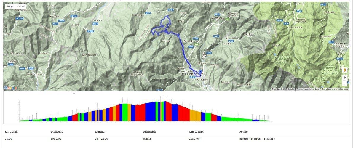 MTB: profilo del percorso attraverso la foresta del bratello
